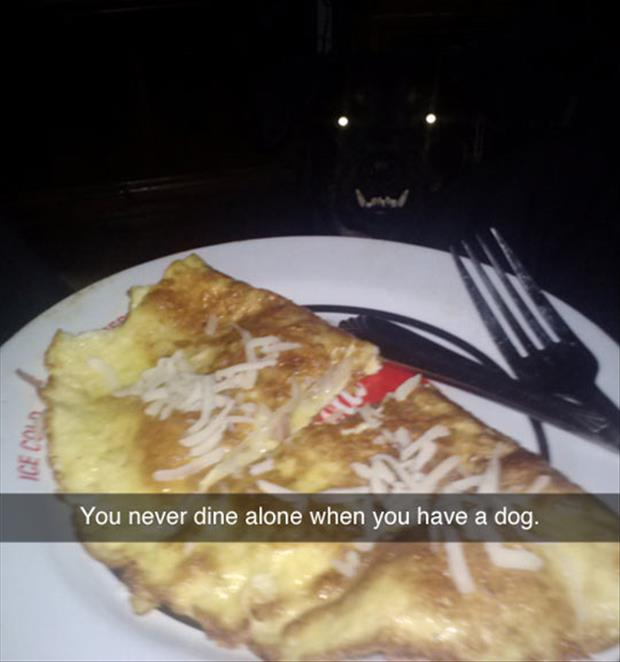never dine alone when you have a dog