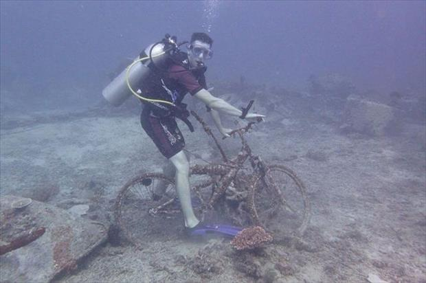 scuba diving and bike riding