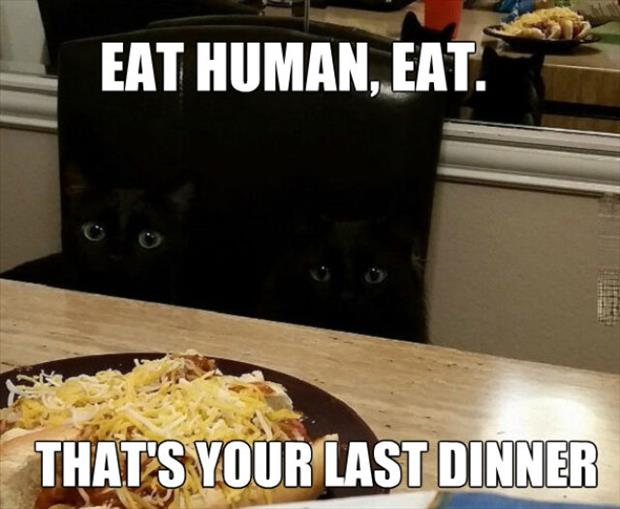 that is your last dinner