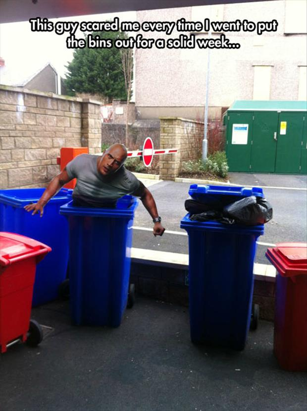 the rock in the trash