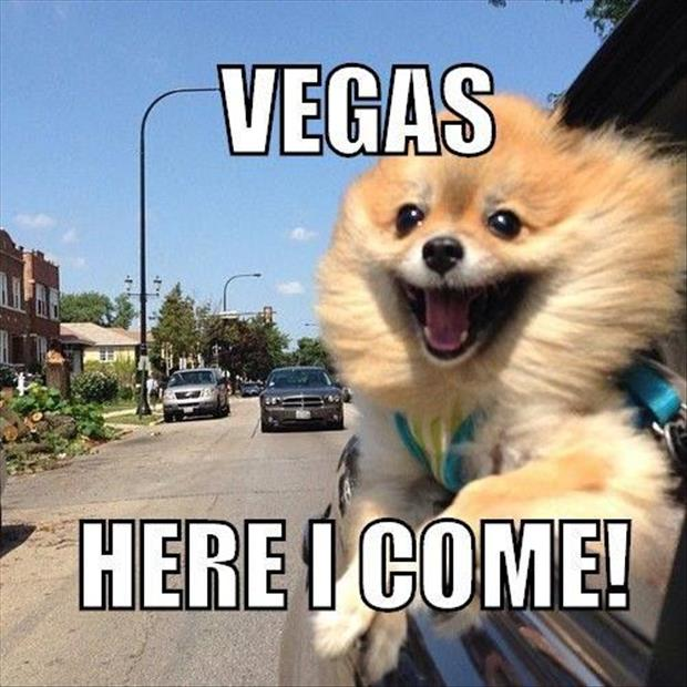 vegas here I come