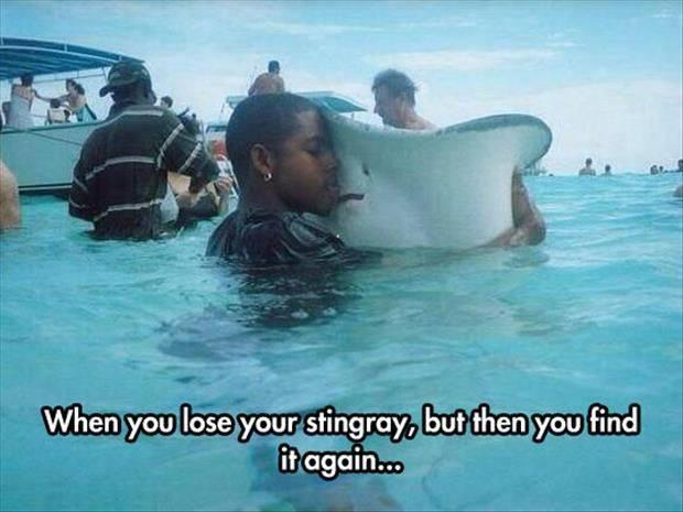 when you lose your stingray