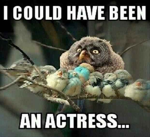 I could've been an actress