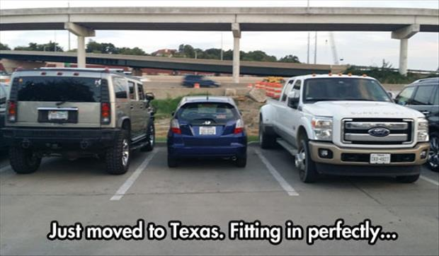 moved to texas