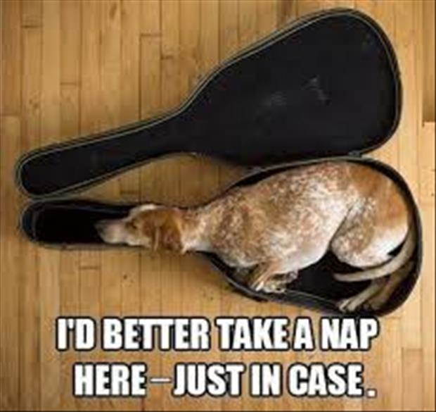 take a nap here just in case