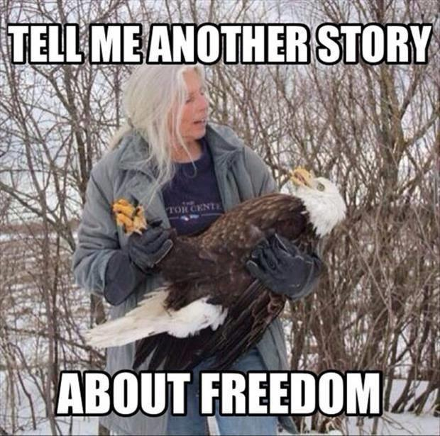 tell me a story about freedom
