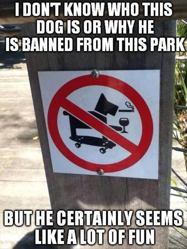 why is this dog banned from the park