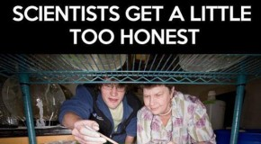 Scientists Get A Little To Honest – 17 Pics