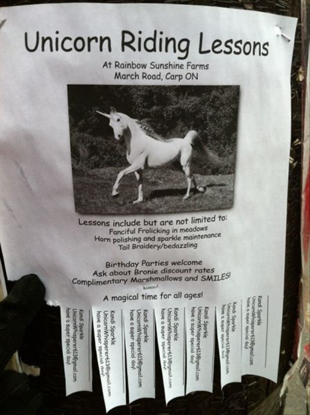 funny flyers (13)