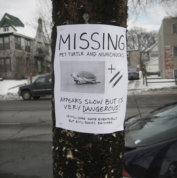 funny flyers (19)