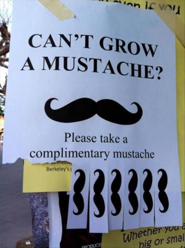 funny flyers (3)