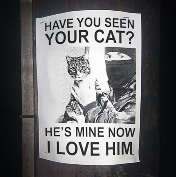 funny flyers (5)