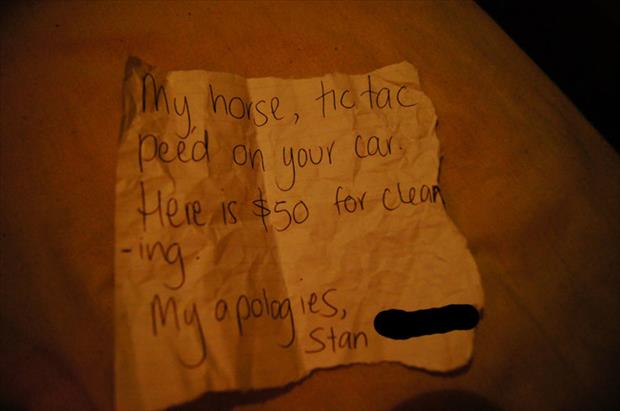 funny notes (1)