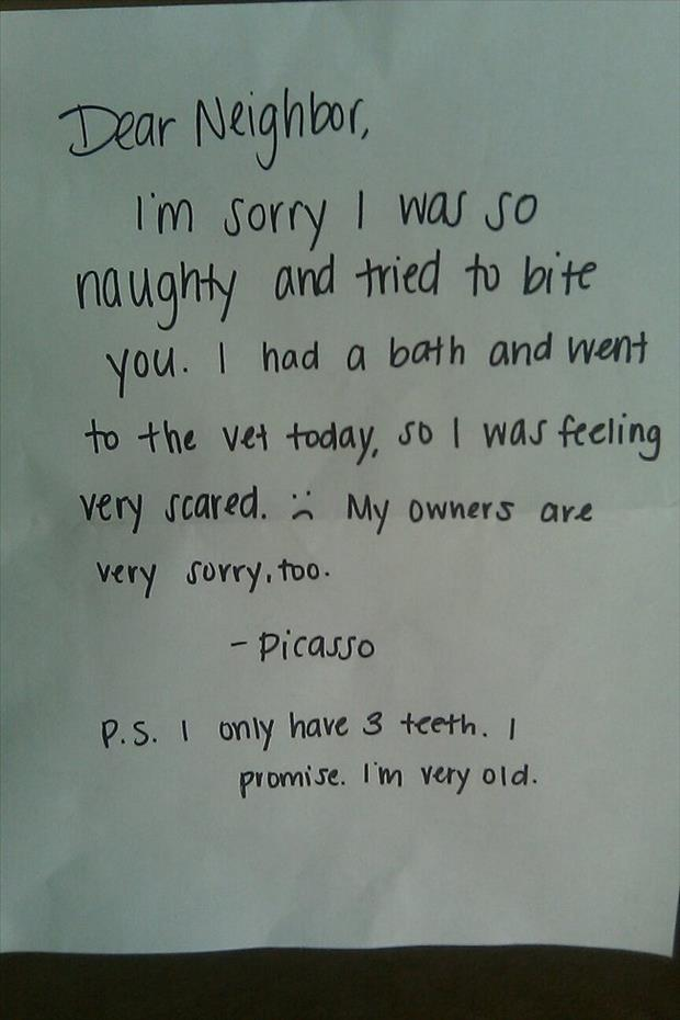 funny notes (15)