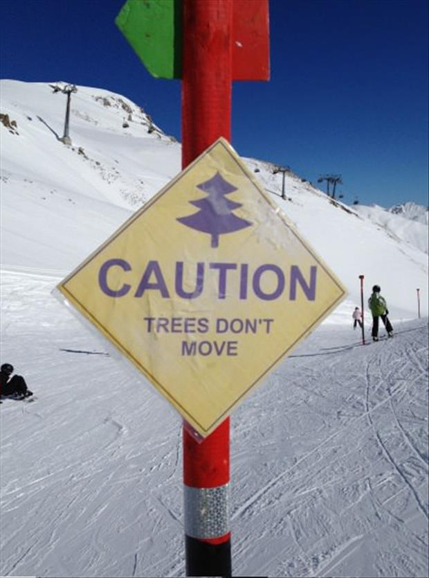funny signs (5)