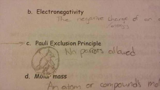 funny test answers (19)