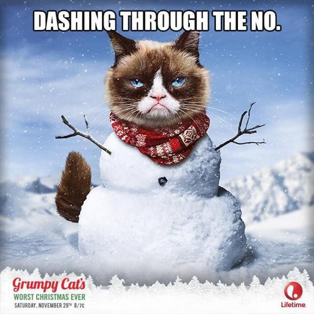grump cat christmas movie