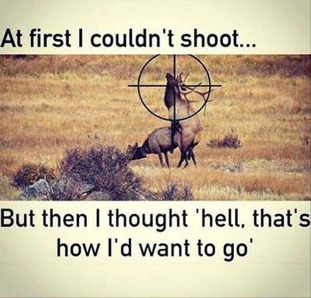 Funny Hunting Quotes Captivating Saturday Afternoon Funny Pictures  69 Pics