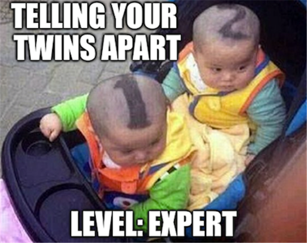 Funny Birthday Meme For Twins : Saturday afternoon funny pictures pics