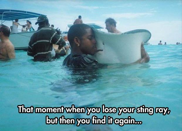when you lose your sting ray