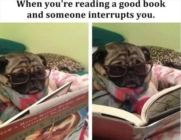 when you're reading a book