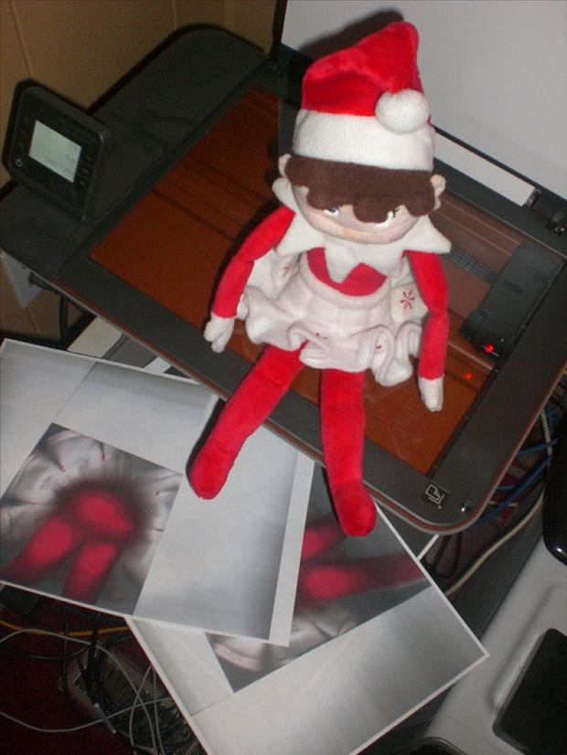 funny elf on the shelf (21)
