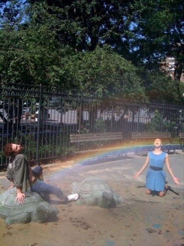 funny pictures of rainbows and guys, dumpaday (10)