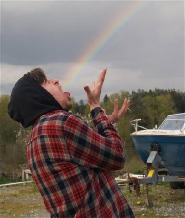 funny pictures of rainbows and guys, dumpaday (9)