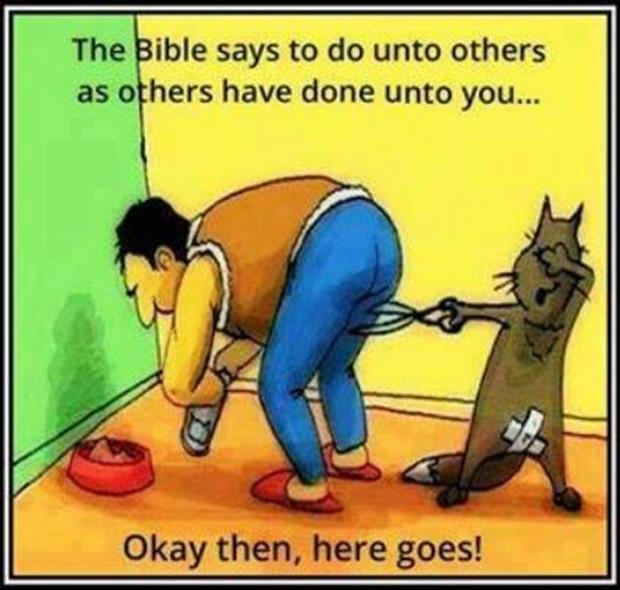 the bible says