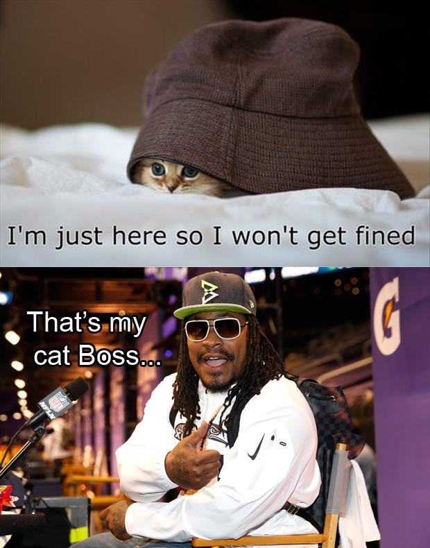 I'm just here so I don't get fined funny pictures