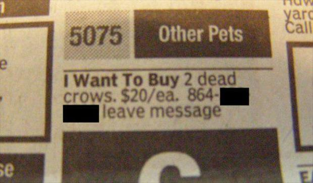 funny classified ads (5)