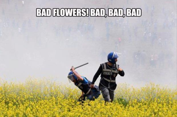 really bad flowers