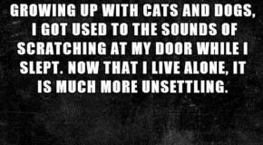 Short Horror Stories That Will Send Chills Up Your Spine – 16 Pics