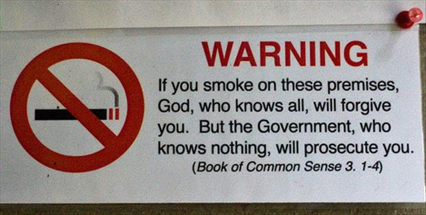 the book of common sense
