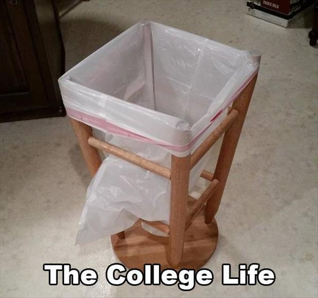 the college life