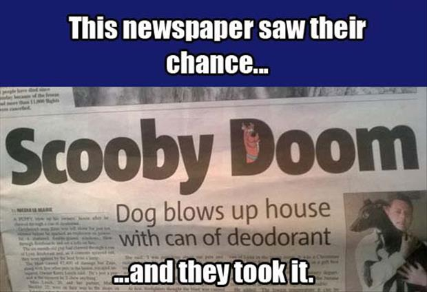 they saw the chance and they took it scooby doo