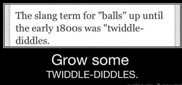 twiddle diddles