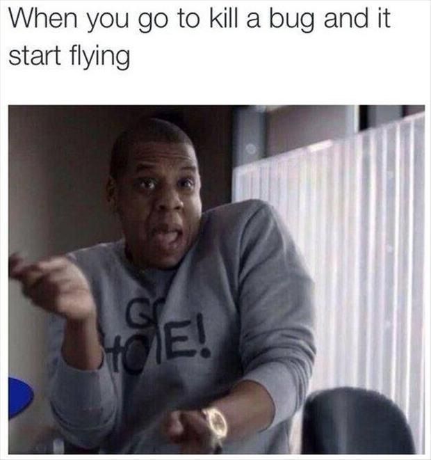 when you kill a bug
