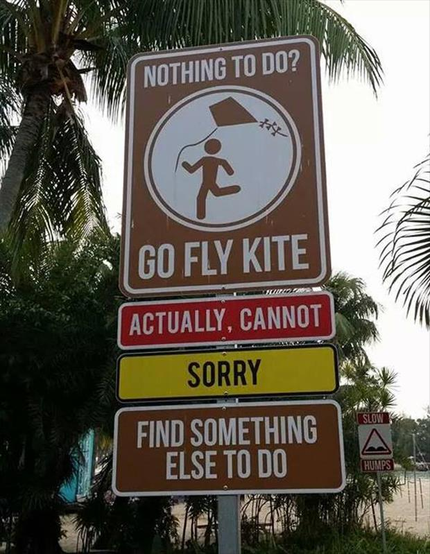 you should go fly a kite