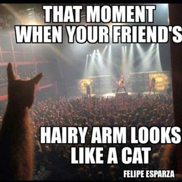 a harry arm