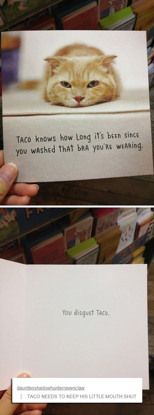 a taco needs to keep his mouth shut