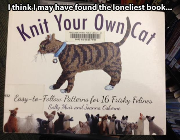 Cat Lady Knitting : Funny pictures of the day pics