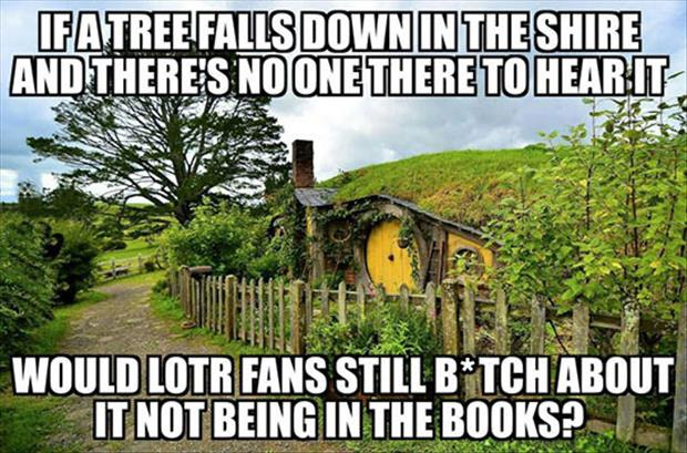 lord of the rings fans