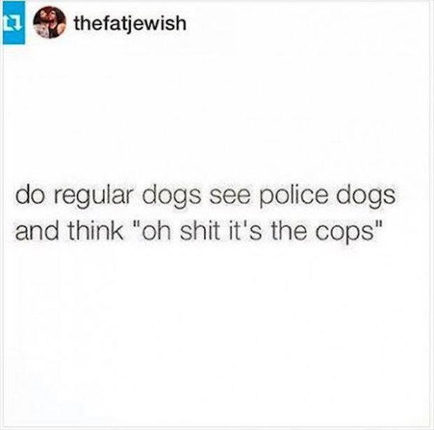oh shit the cops
