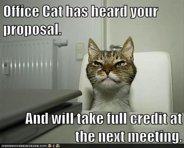 Funny Office Meeting Meme : Cats having secret meetings in an attempt to control the