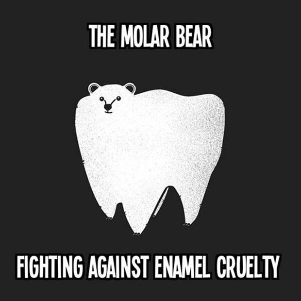 [Image: the-molar-bear.jpg]