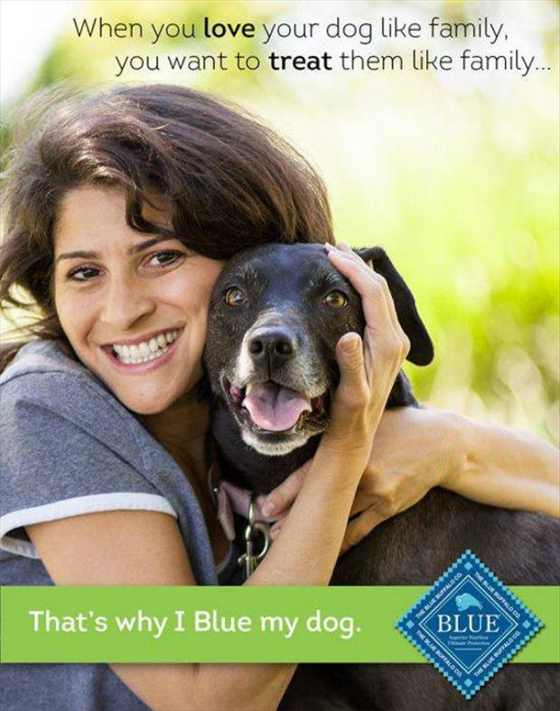why I blow my dog