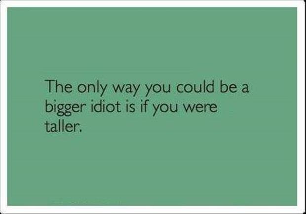 you are a big idiot