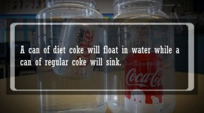 21 Fun Food Facts I Bet You Didn't Know