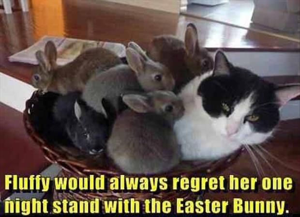 funny easter pictures 17 pics